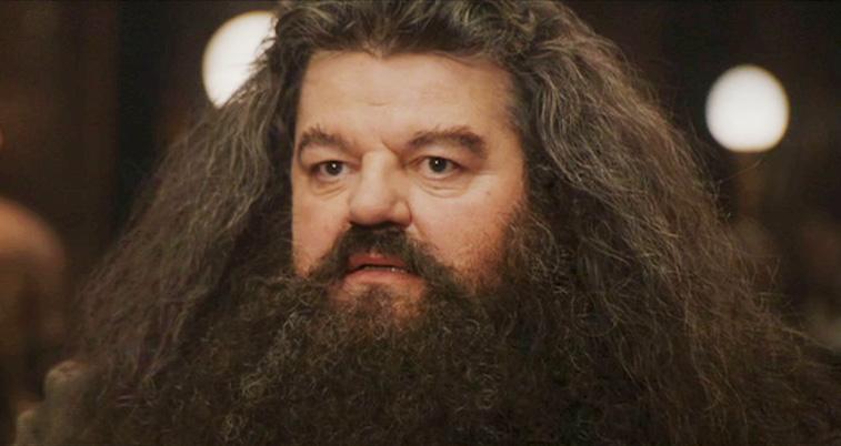 Rubeus Hagrid shock